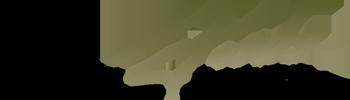 The Ann And Joseph Farda Foundation logo